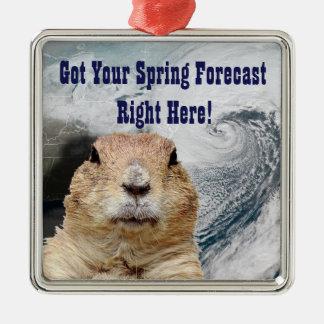 Ornamento De Metal Previsão do primavera de Groundhog