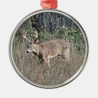 Ornamento De Metal Quantia choruda pelo potvin de james