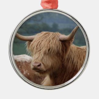Ornamento De Metal retrato do gado das montanhas