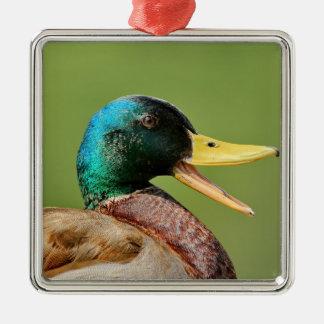 Ornamento De Metal retrato do pato do pato selvagem