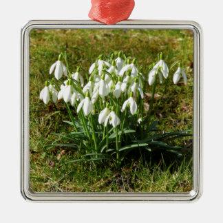 Ornamento De Metal Snowdrops 02,2 (Schneegloeckchen)