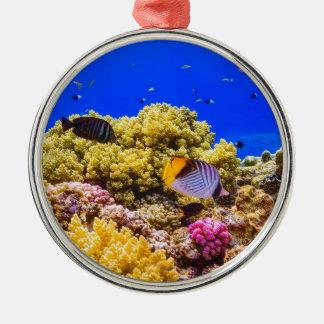 Ornamento De Metal Um recife de corais no Mar Vermelho perto de
