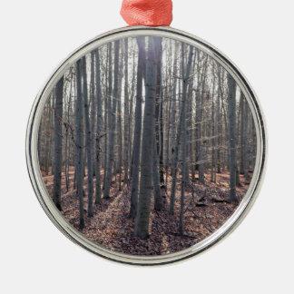 Ornamento De Metal Uma floresta da faia na queda