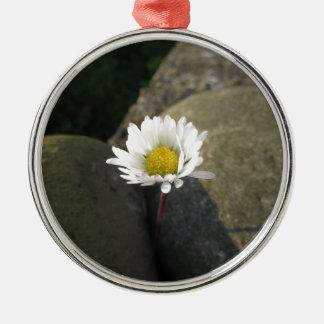 Ornamento De Metal Única flor da margarida branca entre as pedras
