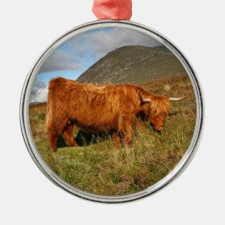 Ornamento De Metal Vacas escocesas das montanhas - Scotland
