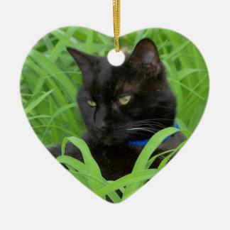 Ornamento do aniversário do gato preto de Bombaim