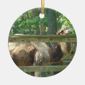 Ornamento do camelo do jardim zoológico New Jersey