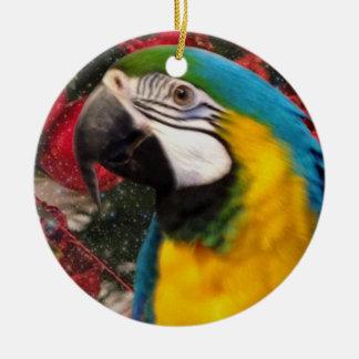Ornamento do feriado do papagaio do Macaw