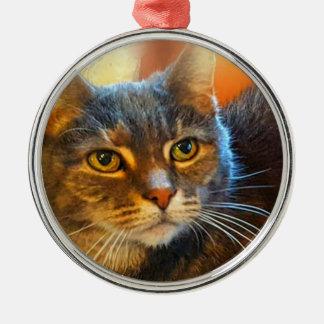 Ornamento do gato de gato malhado da chita pela