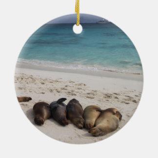 Ornamento do leão de mar