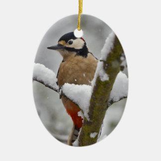 Ornamento do pica-pau do inverno