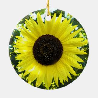 Ornamento ensolarado do girassol