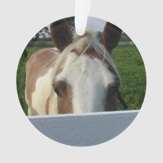 Ornamento Espreite um cavalo do Palomino da vaia atrás da