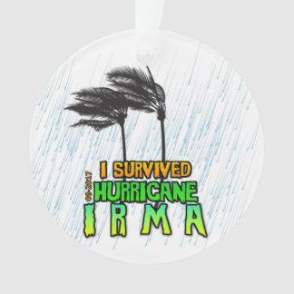 Ornamento Eu sobrevivi ao furacão Irma