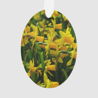 Ornamento Família do Daffodil
