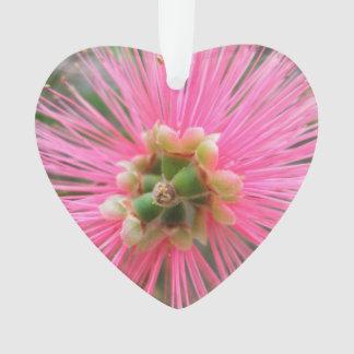 Ornamento Flor cor-de-rosa da árvore de goma