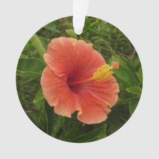 Ornamento Floral tropical da flor alaranjada do hibiscus