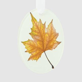 Ornamento Folha de bordo do outono