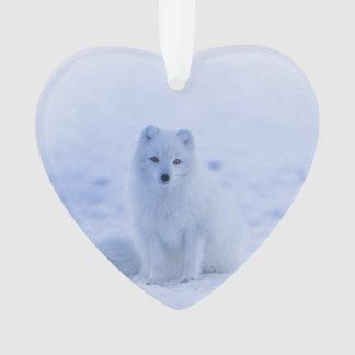 Ornamento Fox ártico de Islândia