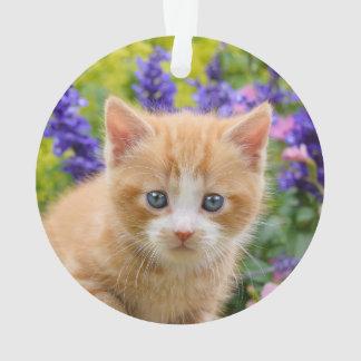 Ornamento Gatinho bonito do gato do gengibre no retrato