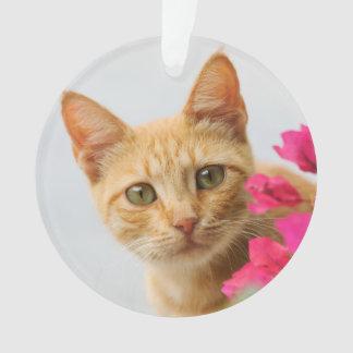 Ornamento Gatinho bonito do gato do gengibre que olha o