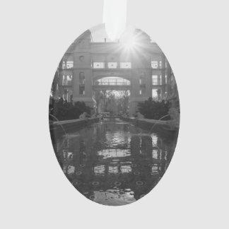 Ornamento Grayscale do Sunburst de Coronado