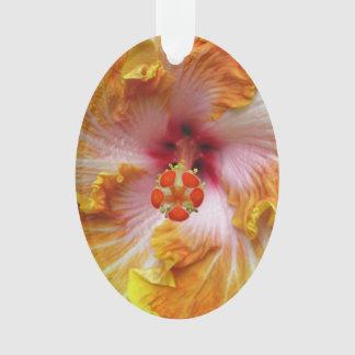 Ornamento Hibiscus