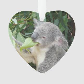 Ornamento Koala que come a folha da goma