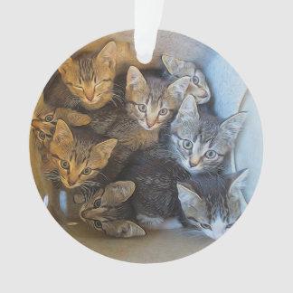 Ornamento Lotes dos gatinhos