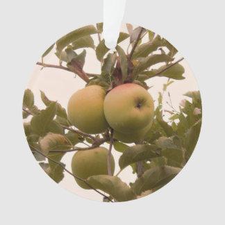 Ornamento Maçãs na árvore de Apple