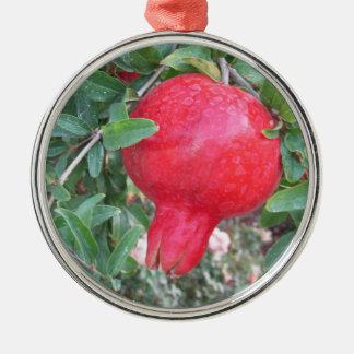 Ornamento maduro da romã