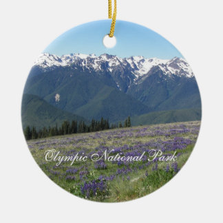 Ornamento olímpico da foto do parque nacional