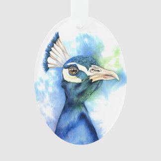 Ornamento Pintura da aguarela do pavão