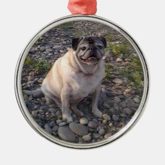 Ornamento redondo Pug-Superior