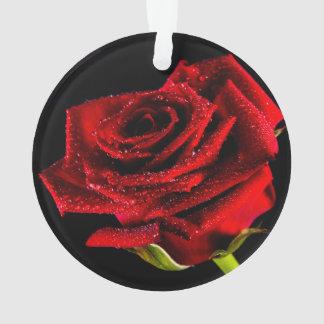 Ornamento Rosa vermelha bonita