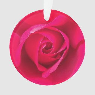 Ornamento Rosa vermelho romântico v2 do rosa