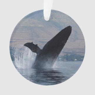 Ornamento ruptura da baleia de humpback