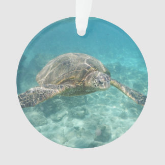 Ornamento Tartaruga de mar verde
