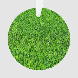 Ornamento Textura verde da grama do verão