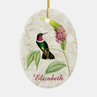 Ornamento Throated Amethyst do colibri