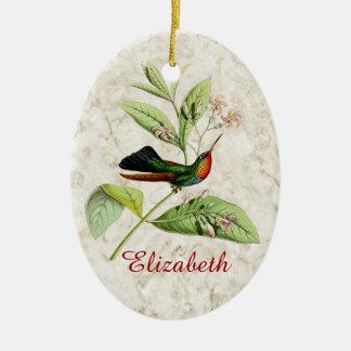 Ornamento Throated impetuoso do colibri
