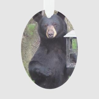 Ornamento Urso preto