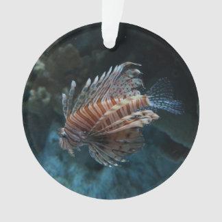 Ornamento vermelho do Lionfish