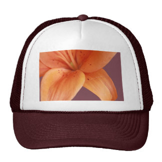 Orquídea alaranjada boné