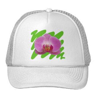 Orquídea Boné