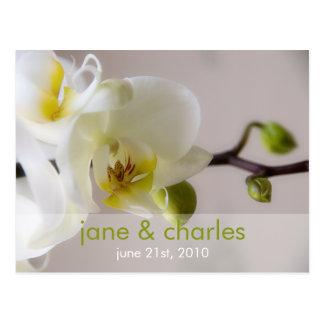 Orquídea branca • Cartão do convite do casamento
