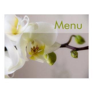 Orquídea branca • Cartão do menu