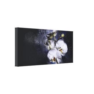 Orquídea do branco das canvas