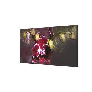 Orquídea do roxo das canvas