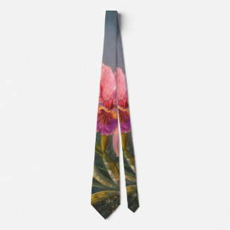 Orquídea e colibris brasileiros 1871 gravata